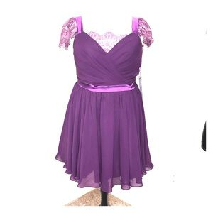 Dresses & Skirts - Beautiful Plum Color Special Occasion DR 1x/2x